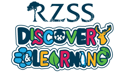 RZSS Discovery and Learning